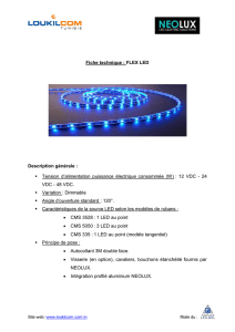 Fiche technique : FLEX LED Description générale