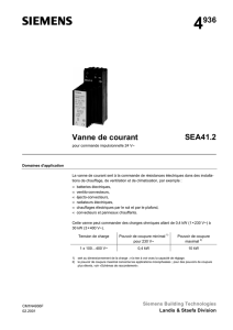 4936 Vanne de courant SEA41.2