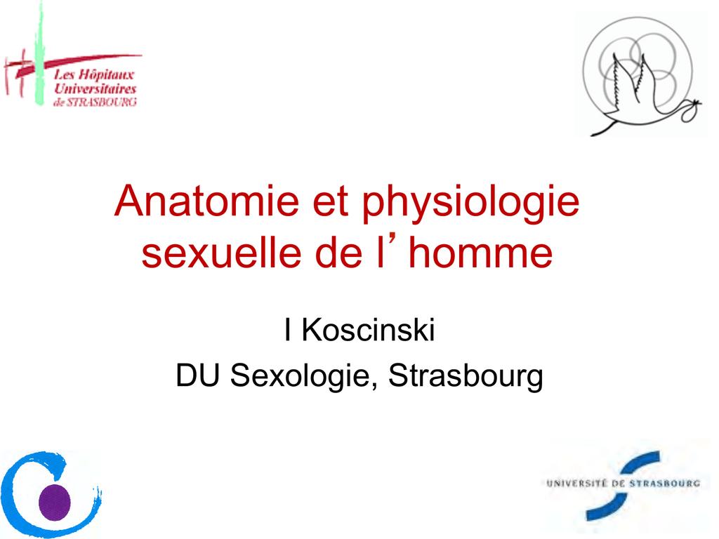 Ausgezeichnet Sexuelle Anatomie Und Physiologie Bilder - Physiologie ...
