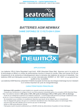 BATTERIES AGM NEWMAX