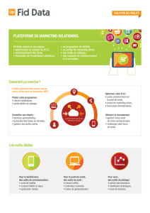 PLatefORme de maRketIng ReLatIOnneL - cev