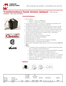 Transformateurs haute tension (plaque) (700 Series)