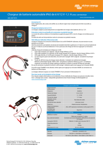 Chargeur de batterie automobile IP65 de 6 V/12 V
