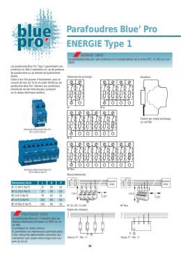 Parafoudres Blue` Pro ENERGIE Type 1