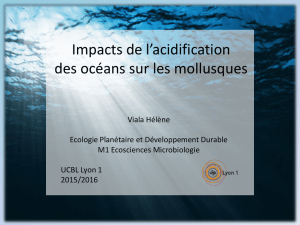 Impacts de l`acidification des océans sur les mollusques