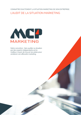 l`audit de la situation marketing
