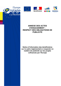 annexe des actes d`engagement : respect des obligations de publicite