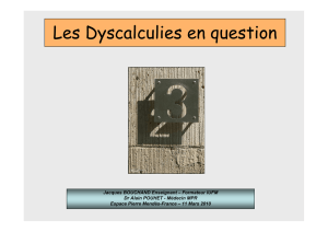 Les dyscalculies en question.