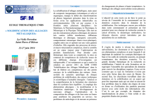 ECOLE THEMATIQUE CNRS « SOLIDIFICATION DES ALLIAGES