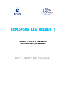 Le document de travail.