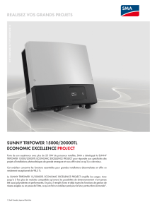 realisez vos grands projets sunny tripower 15000