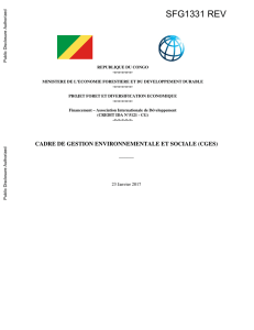 rapport final - World bank documents