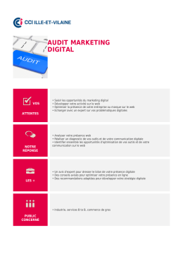 Audit marketing digital - CCI Ille-et