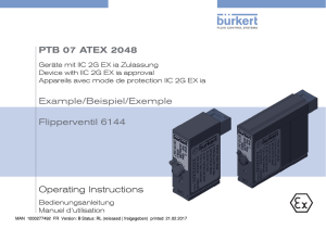 Operating Instructions PTB 07 ATEX 2048 Example
