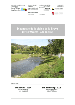 Diagnostic de la plaine de la Broye
