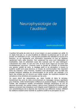 Neurophysiologie de l`audition
