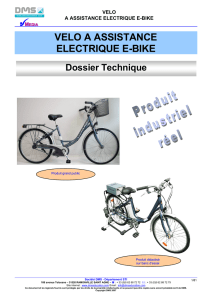 VELO A ASSISTANCE ELECTRIQUE E-BIKE