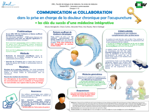 DUMSC - Formation - Immersion 2016 - Poster groupe 12