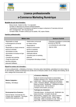 licence professionnelle e-Commerce Marketing