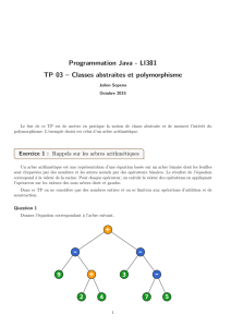 Programmation Java - LI381 TP 03 – Classes