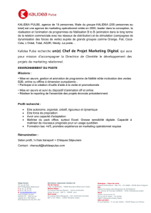 Kalidea Pulse recherche un(e) Chef de Projet Marketing Digital, qui