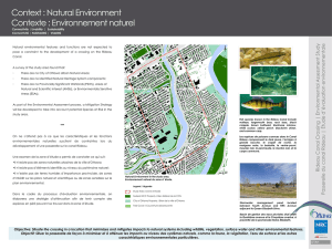 Rideau Canal Crossing | Environmental Assessment
