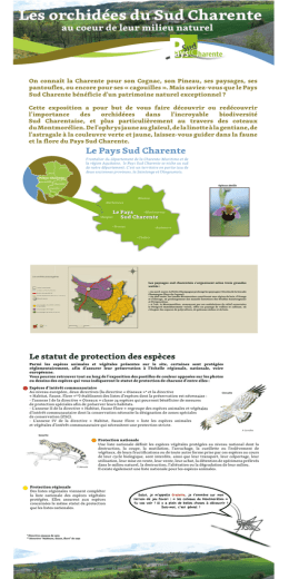 l`exposition - Pays Sud Charente