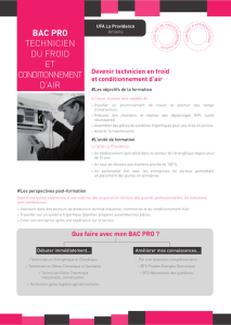BAC Pro TECHNICIEN DU FROID ET CONDITIONNEMENT D`AIR