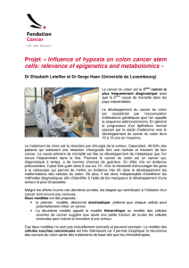 Projet « Influence of hypoxia on colon cancer stem cells: relevance