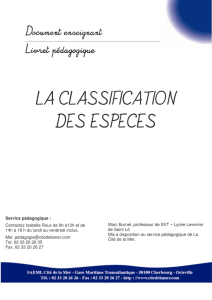 Doc enseignant Classification