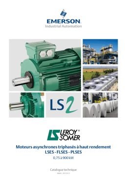 Leroy-Somer Moteurs LSES-FLSES-PLSES - Catalogue
