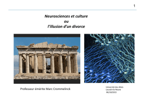 Neurosciences et culture ou l`illusion d`un divorce