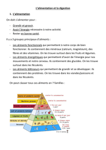 L`alimentation et la digestion 1. L`alimentation On doit s`alimenter