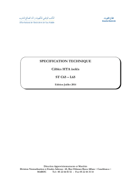 SPECIFICATION TECHNIQUE Câbles HTA isolés ST C65 – L65