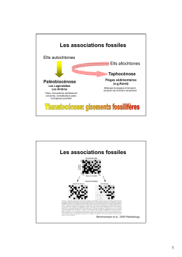 Les associations fossiles Les associations fossiles