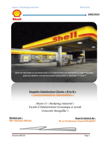 Stage SHELL 2010 - Marketing Industriel B to B