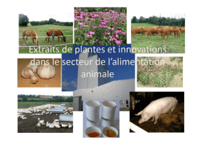 Extraits de plantes et innovations
