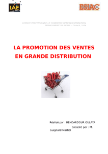 la promotion des ventes en grande distribution