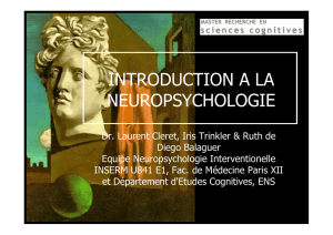 Introduction à la neuropsychologie
