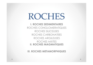I. ROCHES SEDIMENTAIRES ROCHES CONGLOMERATIQUES