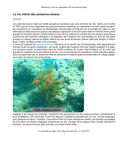 Article en pdf - Université de Liège
