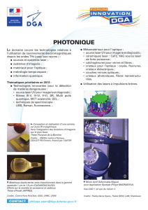 Photonique - Orientations 2013