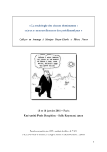 La sociologie des classes dominantes