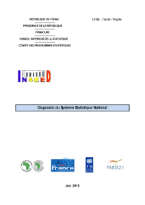 Diagnostic du Systeme Statistique National