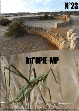 Inf´Opie-MP n°23