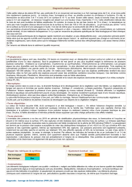 Diagnostic complet 2009
