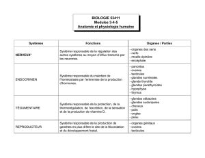 BIOLOGIE 53411 Modules 3-4-5 Anatomie et physiologie humaine