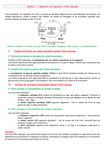 1 L`adaptation de l`organisme à l`effort physique - BP APT SXM 15-16