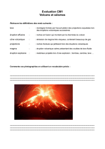 Evaluation CM1 Volcans et séismes