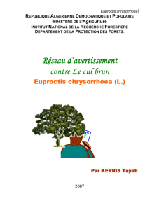 Euproctis chrysorrhoea - Hacharate